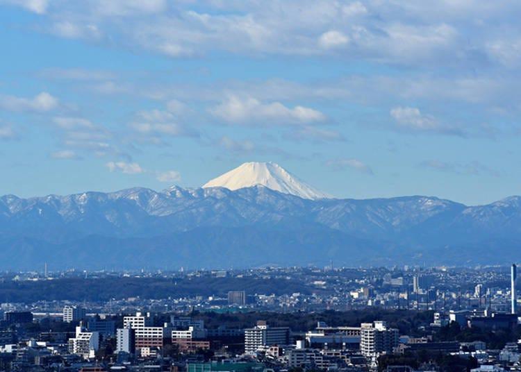 从东京也能看见富士山的景点4. 在松软沙发上眺望富士山「Sky Carrot展望厅」