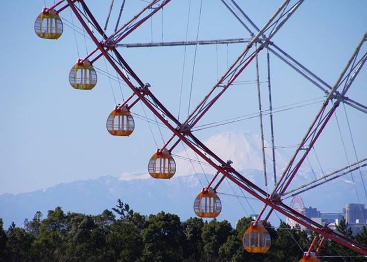 从东京也能看见富士山的景点9. 摩天轮与富士山共筑的趣味日本风景「葛西临海公园」