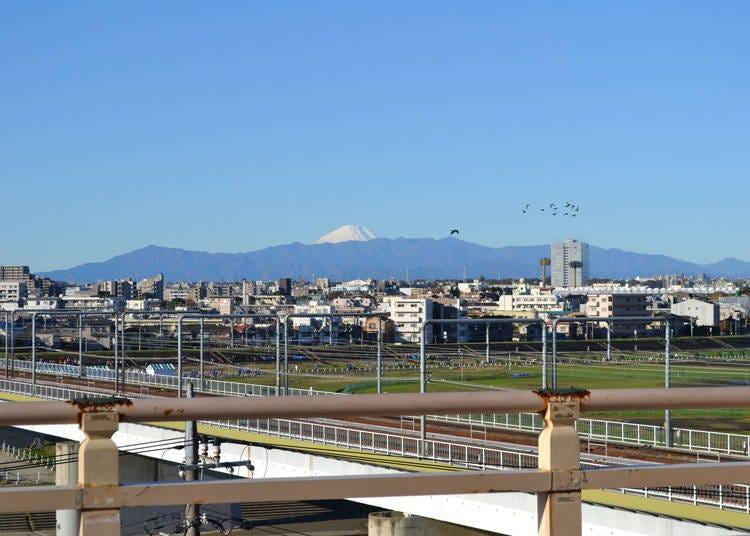 从东京也能看见富士山的景点10. 富士山、多摩川与电车同框合影「多摩川浅间神社」