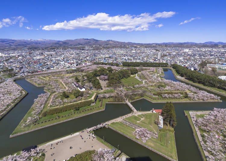 北日本の開花時期は、平年並みか平年より早い