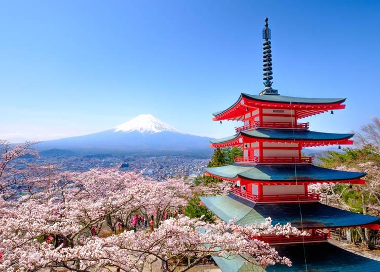 東日本の開花時期は、平年より早いか平年よりかなり早い
