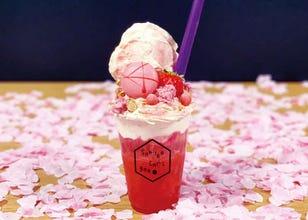 120万枚の「桜風呂」や食べ放題も! 東京で桜を見ながら楽しめるグルメ&スイーツイベント3選