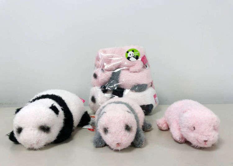 우에노 동물원에 가면 꼭 사고 싶은 판다 기념품 5선