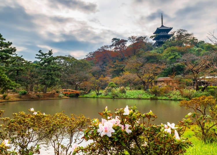 [번외편]조금 더 욕심을 내 관광을 즐기고 싶다면…일본적인 정취가 두드러진 정원 산케엔을 둘러 보자.