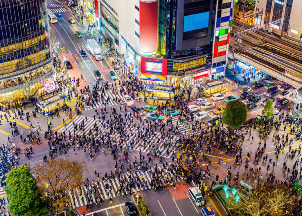Shibuya Tour: Explore All of Shibuya With This Free Walking Tour!