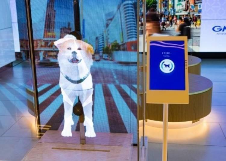 1:30 p.m.: Taking a commemorative photo with digital Hachiko at Tokyu Plaza Shibuya