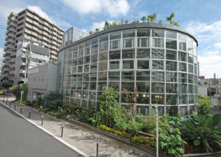 19. 日本で一番小さいといわれる植物園「渋谷区ふれあい植物センター」