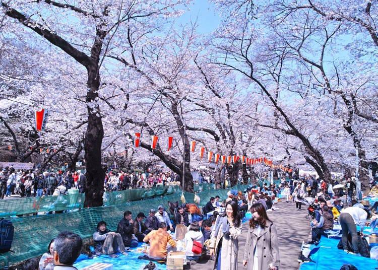 1. Ueno Park