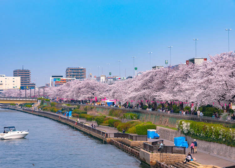 5. Sumida Park