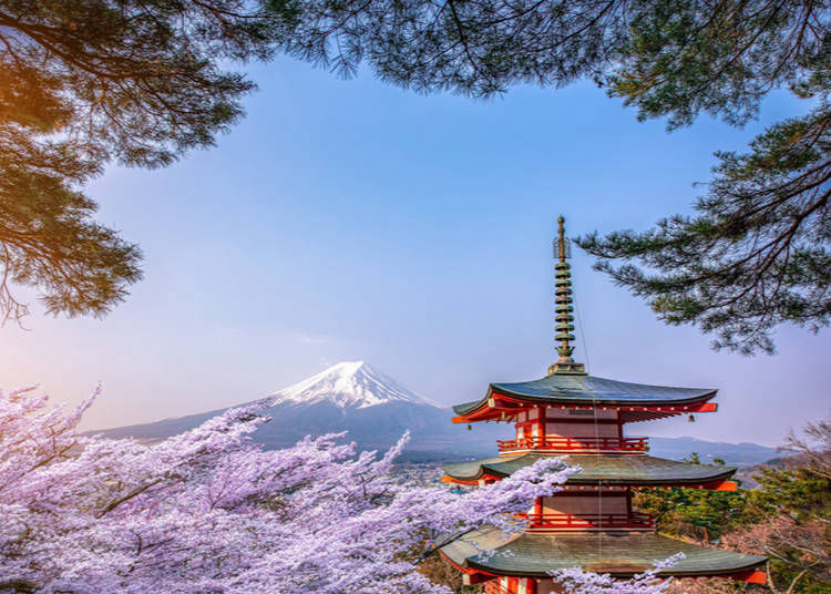 6. Japan is also known for its peace, quiet, beauty and contact with nature