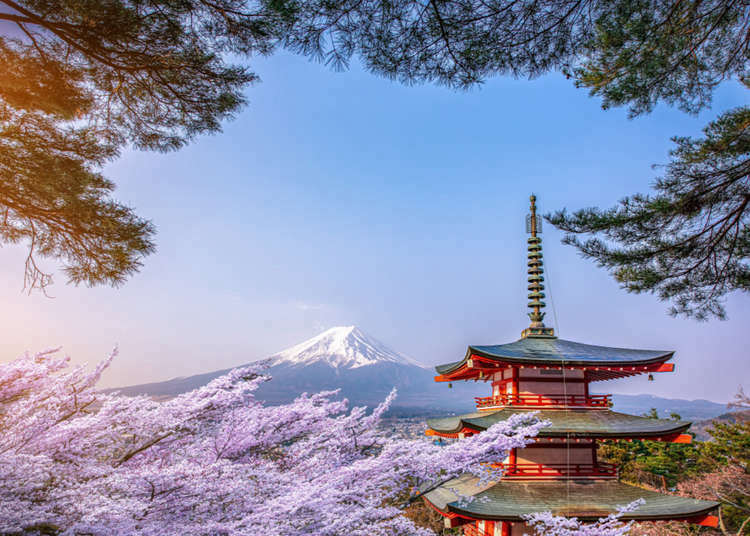 Complete Guide to Visiting Japan in April: Weather, What to See & Do