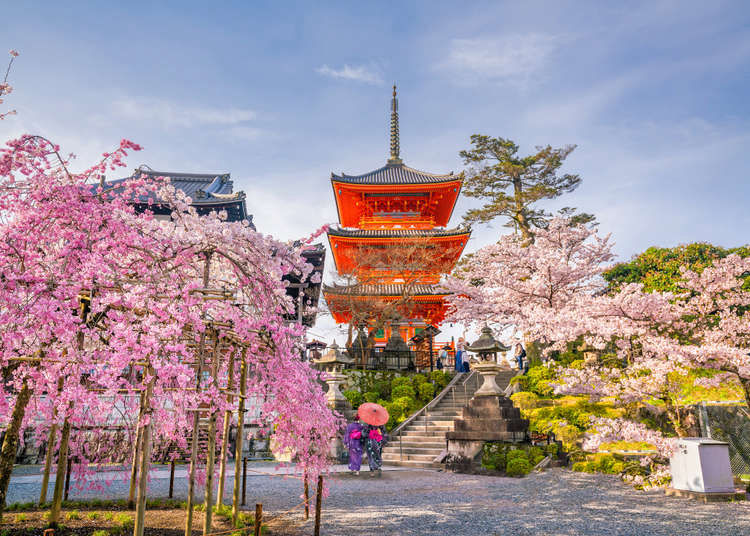 23 Astounding Places to Visit in Japan: If You Could Visit Just One Place in Japan, Where Would it Be?