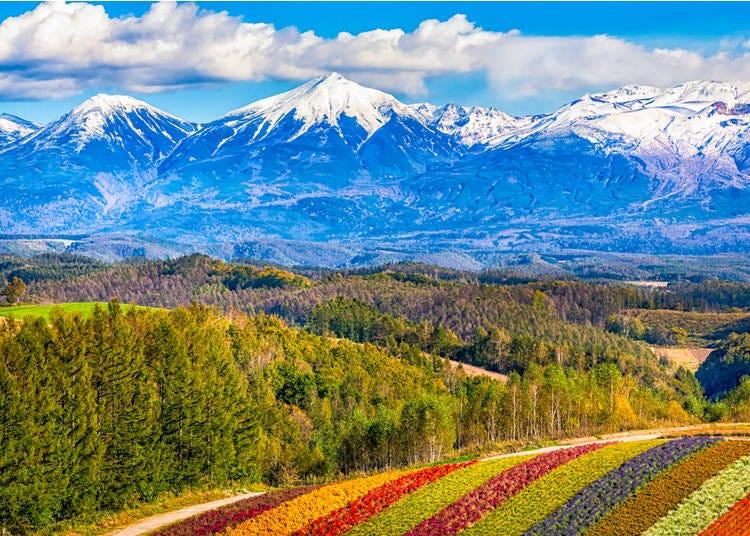 North And South: Hokkaido and Okinawa