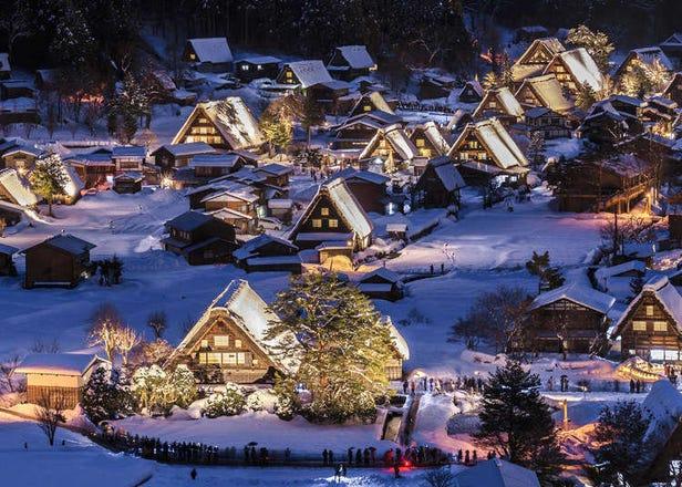 從東京出發!搭上省錢巴士來場日本中部絕美景點&世界遺產自由行
