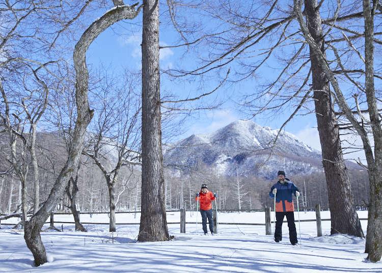 Explore Nikko National Park: Japan's Incredible Scenic Winter Wonderland!