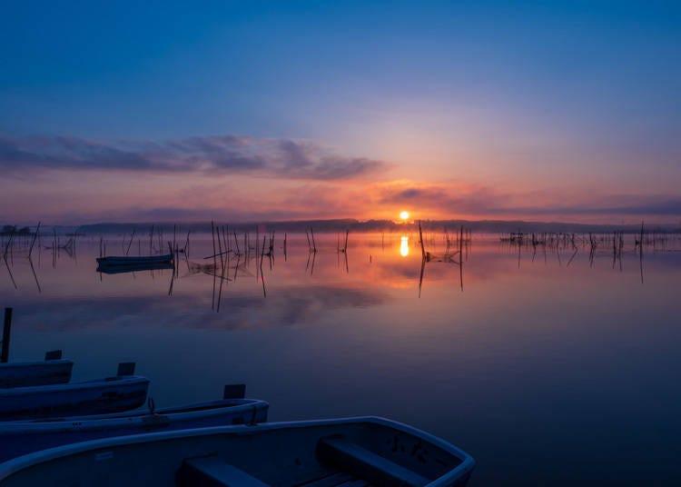 2. Enjoy Nature at Lake Inba-numa