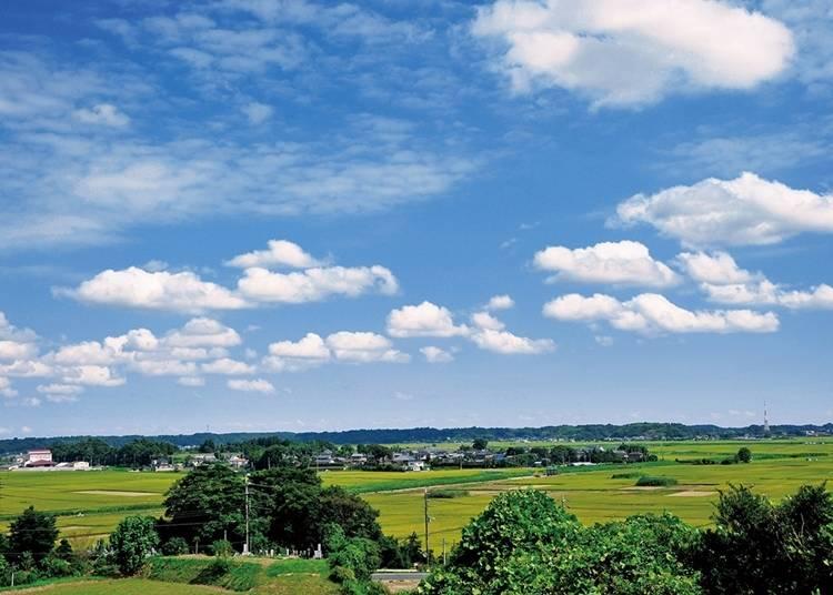26. 田舎の風景