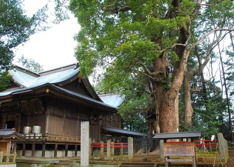 35. 神崎神社