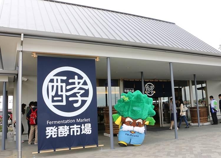 34. 하코노사토 고자키 중간 정거장