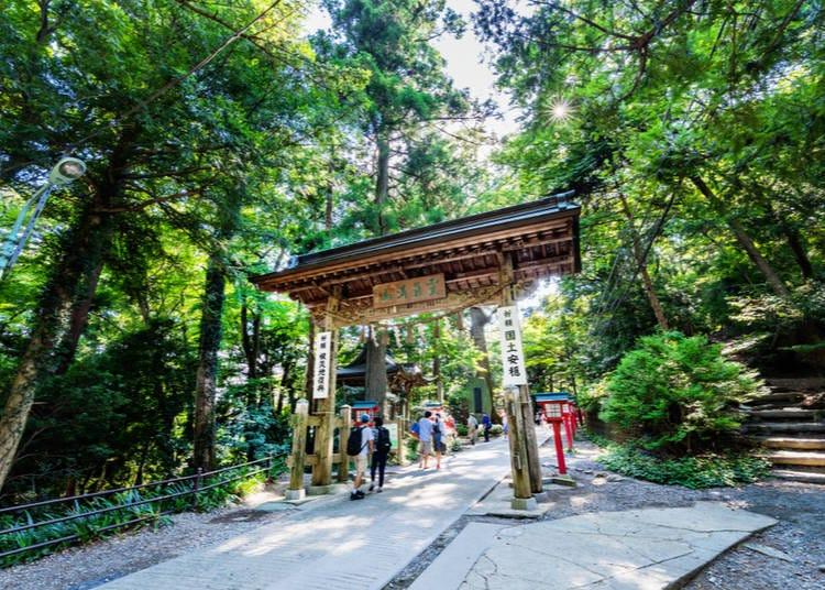2. Climb Mount Takao