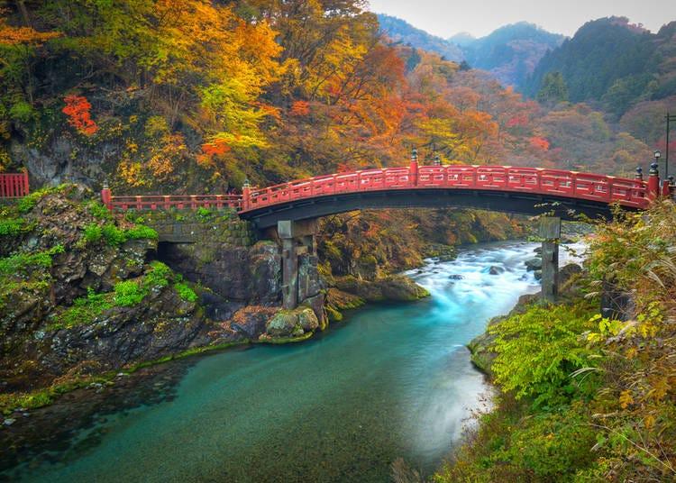 10. Day Trip to Nikko