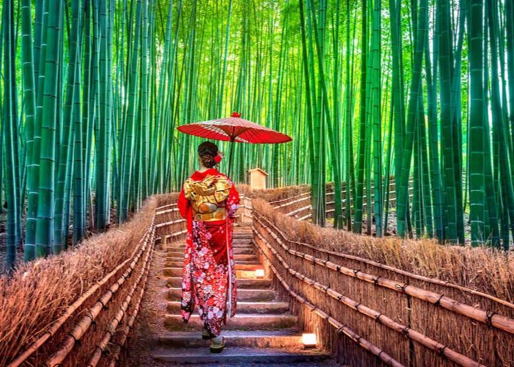 13. Arashiyama Bamboo Grove