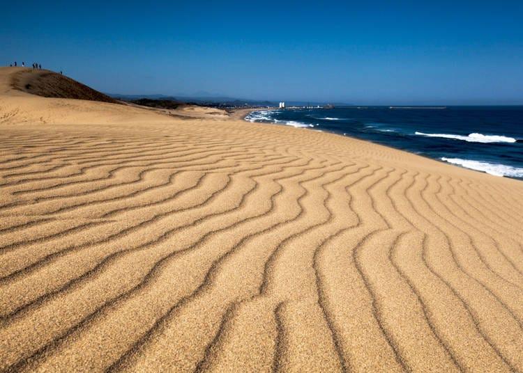 20. Tottori Sand Dunes