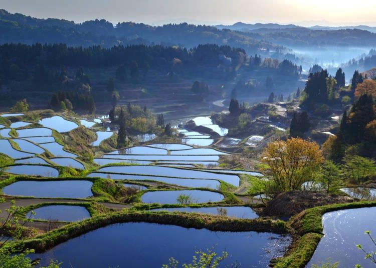 1. Hoshitouge Tanada Rice Field