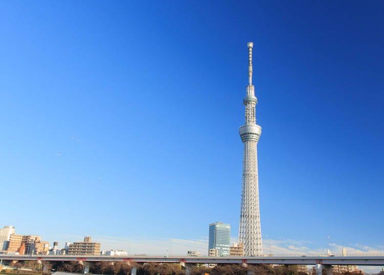 10. 도쿄 스카이트리까지 가 보기!