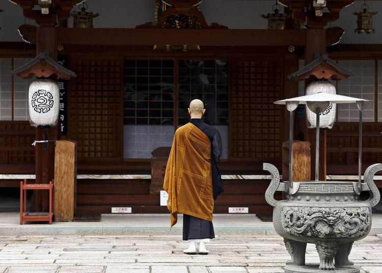 14. 三日坊主(mikkabōzu)
