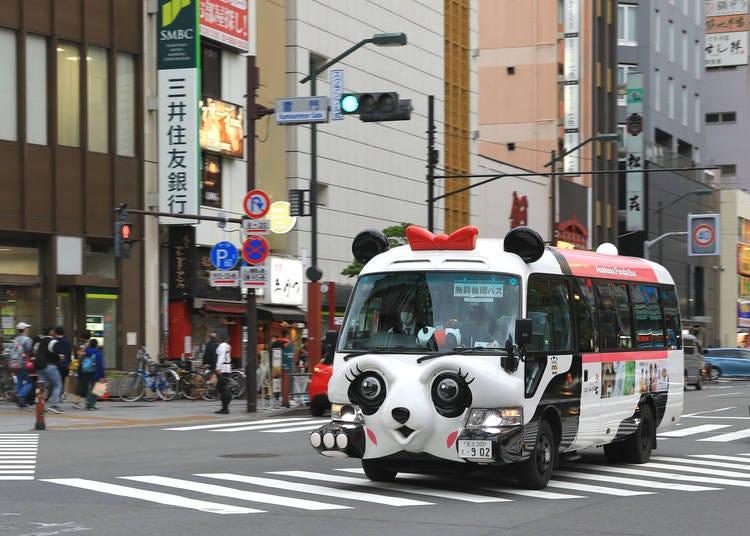 2. Take a Free Sightseeing Bus