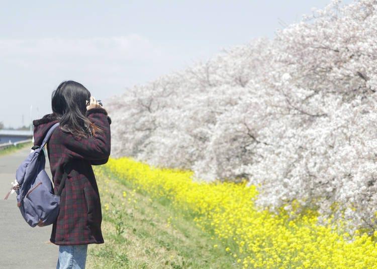 1. Kumagaya (Saitama)