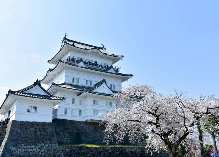 4. Odawara (Kanagawa)