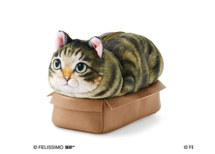 If it Fits, I Sits! Japan's Cutest Cat Souvenirs