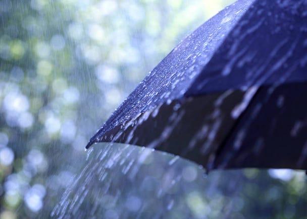 日本人はなぜすぐに傘をさすの?