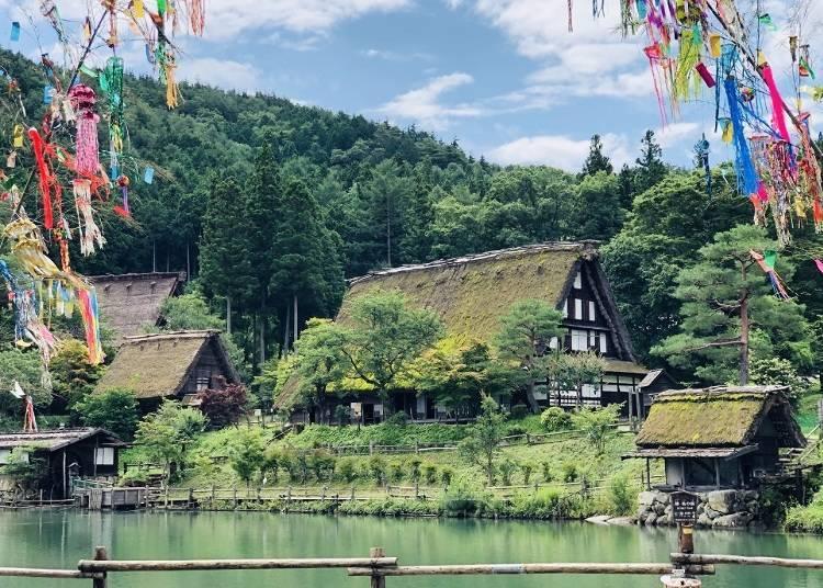 2. Enjoy the beauty of Hida Folk Village's traditional gasshō-zukuri thatched roof homes!