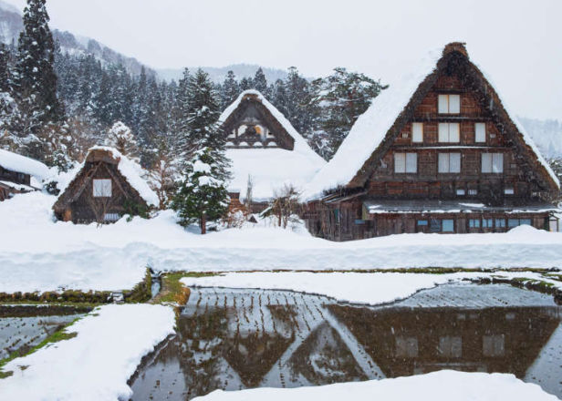"""Are you serious?!"" Things That Surprised Foreigners About Shirakawa-gō!"
