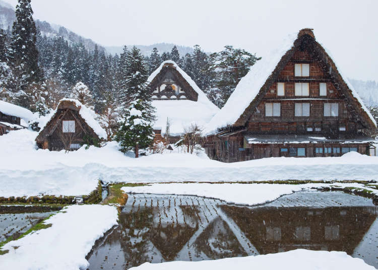 """""""Are you serious?!"""" Things That Surprised Foreigners About Shirakawa-gō!"""