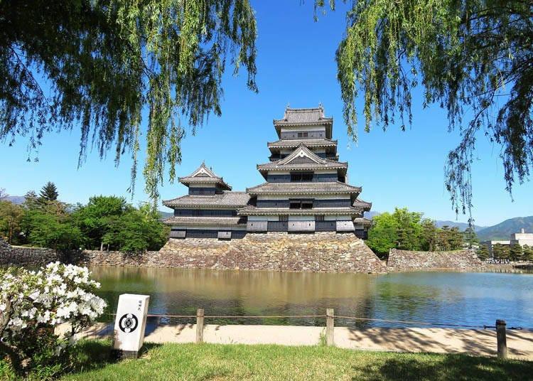四季松本城-万象更新的夏天&活动接踵的秋天