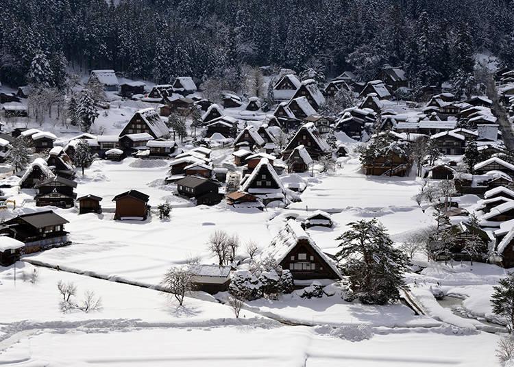 The Beauty of Shirakawa-Go Throughout the Seasons