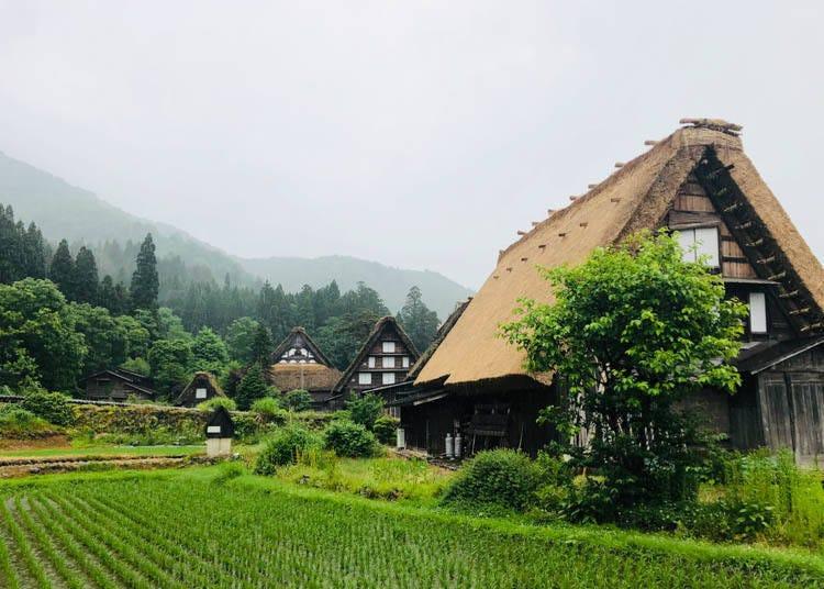 白川鄉景點①適合漫遊散步的「荻町合掌造集落」