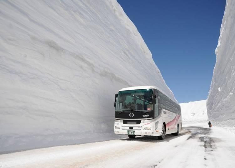 高耸壮观的雪壁令人心生敬畏!立山黑部阿尔卑斯山脉路线「雪之大谷」
