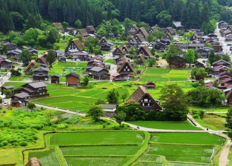 1. Shirakawa-go: Feel like you are in the world of picture books