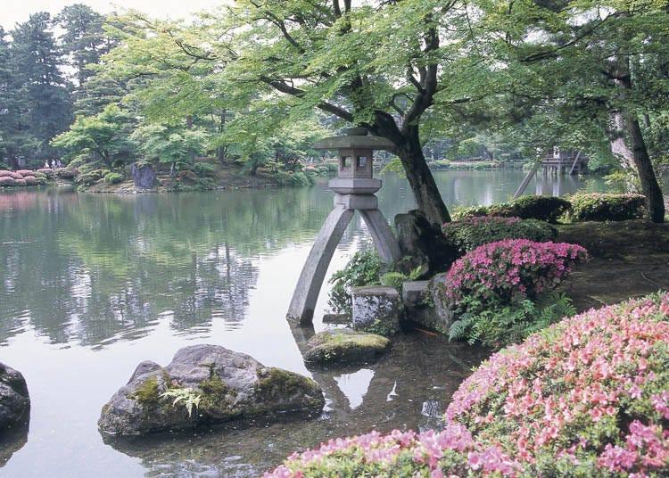 金泽景点②前往「兼六园」感受日式庭园的季节变换
