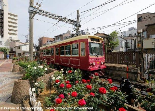 Tokyo Sakura Tram (Toden Arakawa Line)