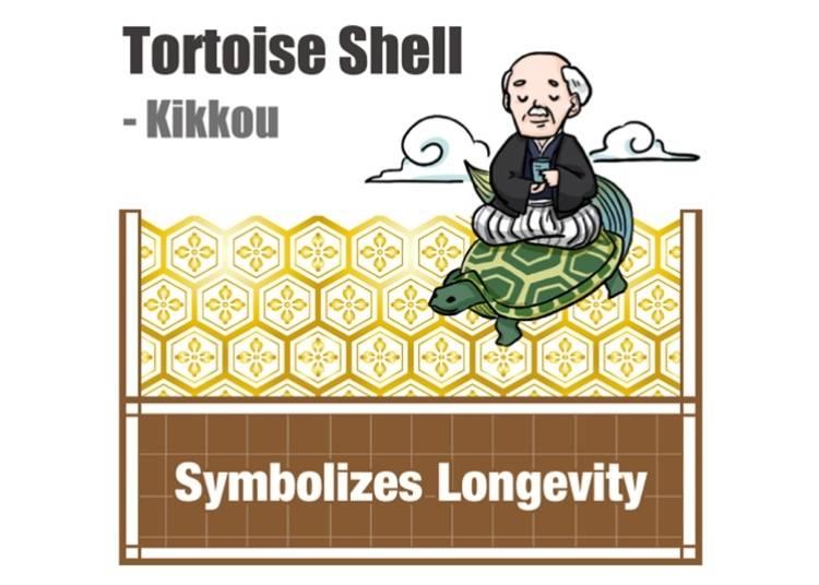 Tortoise Shell - Kikkou