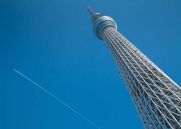 東京スカイツリーが都民限定50%OFF! 都民なのに「登ったことない」人は今がチャンス