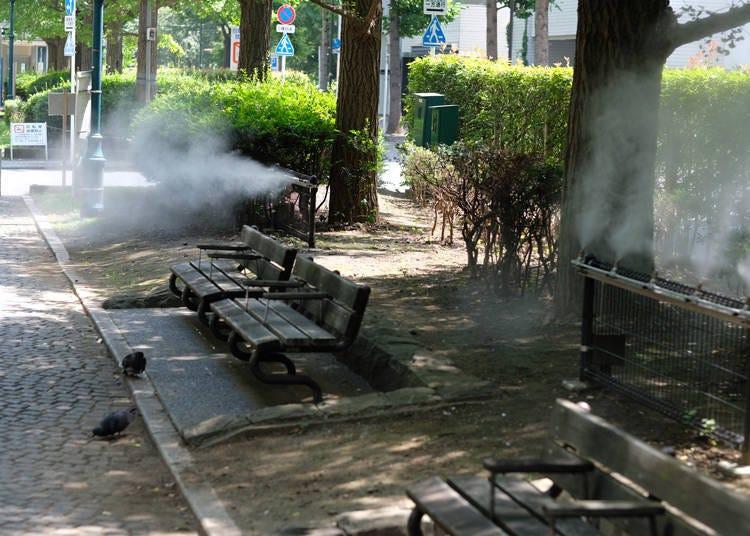 暑い、暑すぎる!外国人も日本の夏に限界寸前
