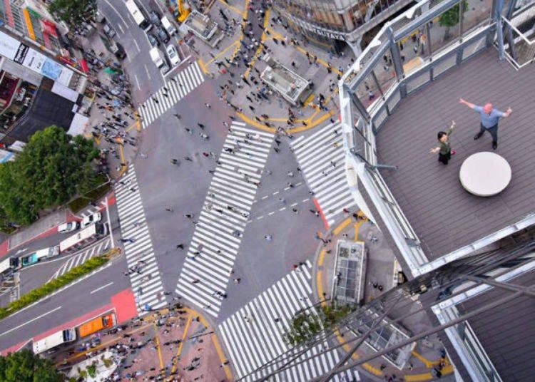 7. Peer down at the Shibuya Scramble Crossing