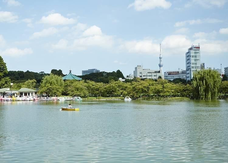 25. Ueno Park